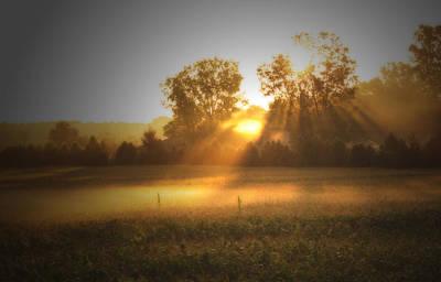 Morning Sunrise On The Cornfield Poster