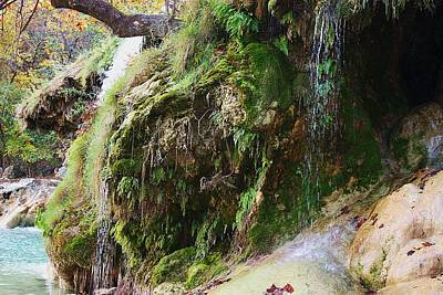 Poster featuring the photograph Moss And Waterfalls by Sheila Brown