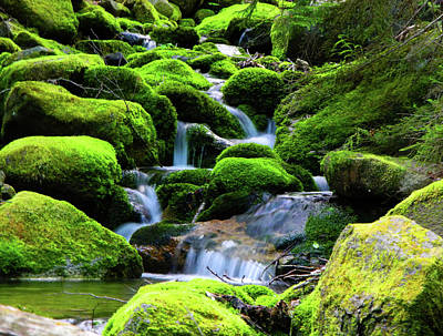 Moss Rocks And River Poster by Raymond Salani III