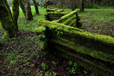 Mossy Fence 5 Poster by Bob Christopher