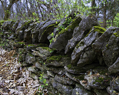 Mossy Stone Fence, Frankfort, Ky Poster by Rebecca Snyder