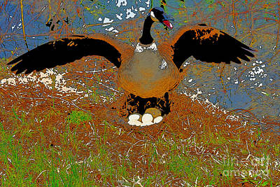 Mother Goose Guards Nest Poster by Chris  Taggart