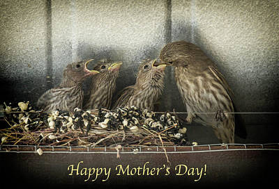 Poster featuring the photograph Mother's Day Greetings by Alan Toepfer