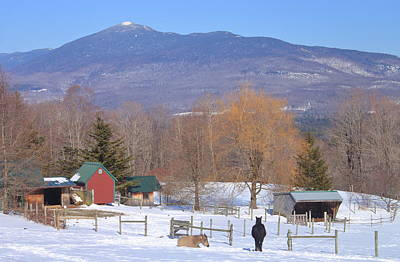Mount Abraham And Winter Farm Green Mountains Poster by John Burk
