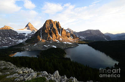 Mount Assiniboine Canada 1 Poster by Bob Christopher