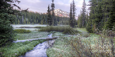 Mount Bachelor From Soda Creek At Dawn Poster