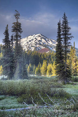 Mount Bachelor Over Meadow Poster