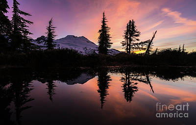 Mount Baker Sunrise Reflection Poster by Mike Reid