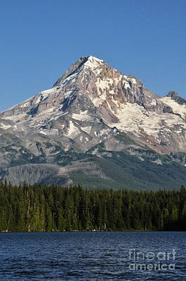 Mount Hood Above Lost Lake Poster