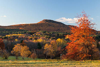 Mount Norwottuck In Fall Color From Mount Pollux. Poster
