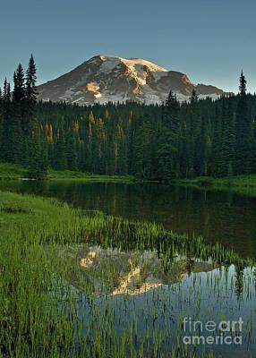 Mount Rainier Dawn Reflection Poster by Mike Reid