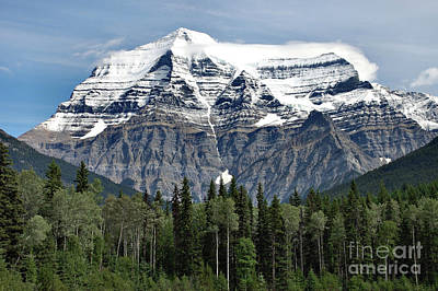 Poster featuring the photograph Mount Robson British Columbia by Elaine Manley