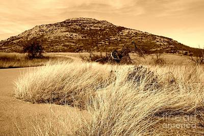 Mount Scott In Sepia Poster by Mickey Harkins