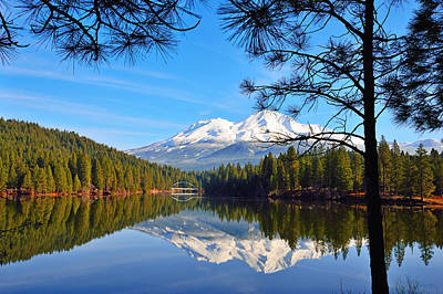 Mount Shasta Reflections On The Lake Poster