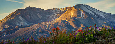 Mount St Helens Spring Bounty Poster by Mike Reid