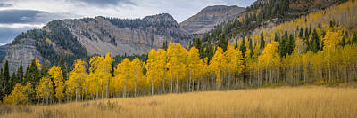 Mount Timpanogos Meadow In Fall Poster