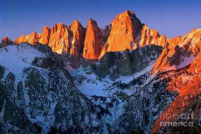 Mount Whitney Poster by Inge Johnsson