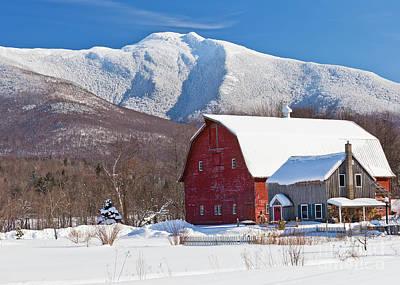 Mountain Homestead Poster