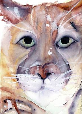 Poster featuring the painting Mountain Lion by Dawn Derman