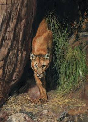 Poster featuring the painting Mountain Lion Emerging From Shadows by David Stribbling