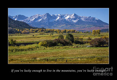 Mountain Living  Poster by Priscilla Burgers