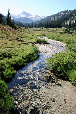 Mountain Meadow And Stream Poster