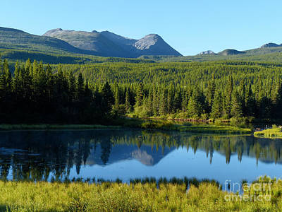 Mountain Reflections Yukon Wilderness Poster by Teresa A and Preston S Cole Photography