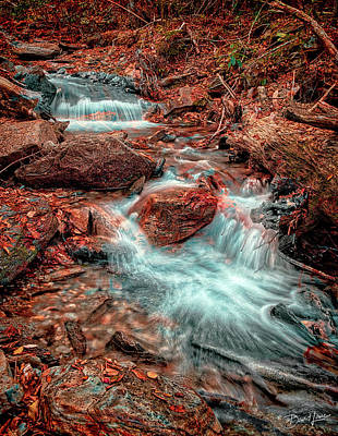 Mountain Stream And Leaves Poster
