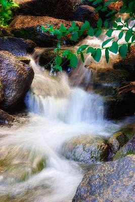Mountain Stream Wasatch Mts. Utah Poster