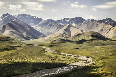 Mountains In Denali National Park Poster