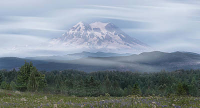 Mt. Rainier Poster by Patti Deters