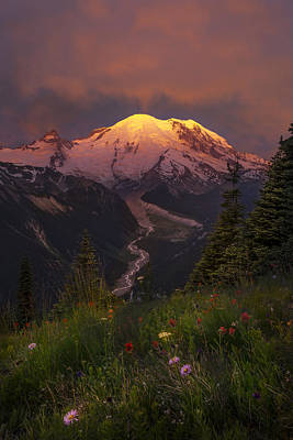 Mt. Rainier Sunrise Poster