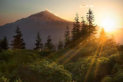 Mt. Shasta Poster by Leland D Howard