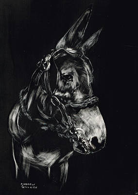 Mule Polly In Black And White Poster