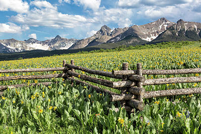 Mule's Ears And Mountains Poster