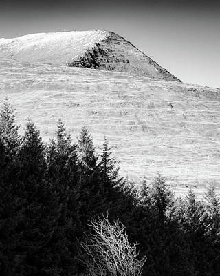 Mull Trees And Peak Poster