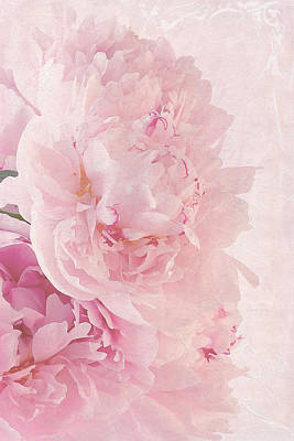 Artsy Pink Peonies Poster by Sandra Foster