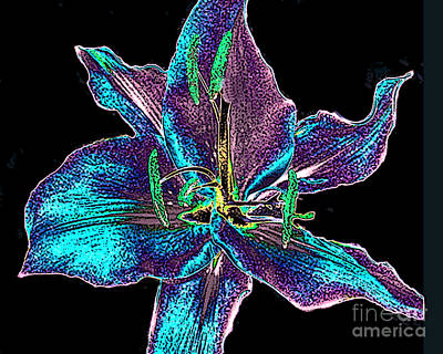 Multi-color Lily - Digital Painting Poster by Merton Allen