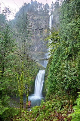 Multnomah Falls Waterfall Oregon Columbia River Gorge Poster by Dustin K Ryan