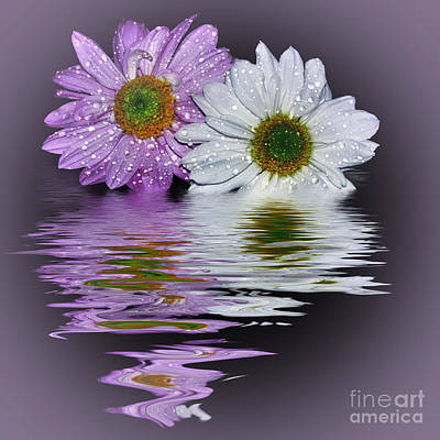 Mums Reflecting In Lilac By Kaye Menner Poster by Kaye Menner