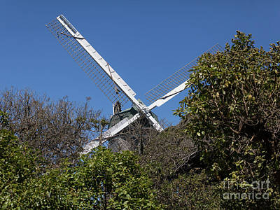 Poster featuring the photograph Murphy Windmill San Francisco Golden Gate Park San Francisco California 5d3264 by San Francisco Art and Photography