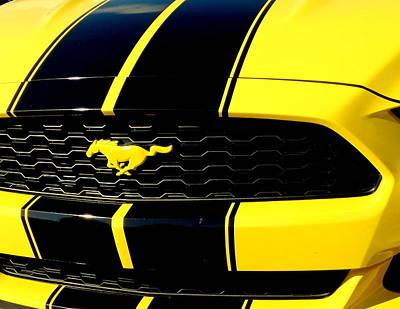 Mustang In Yellow Poster