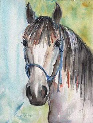 Mustang Makeover Poster by Maria's Watercolor