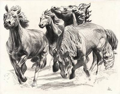 Mustangs Of Las Colinas Poster