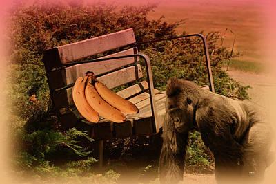 My Bananas Poster by KJ DePace