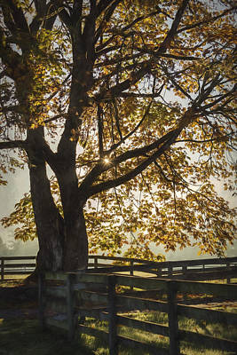 My Favorite Season - Autumn Art Poster by Jordan Blackstone