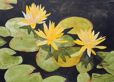 My Pond Poster