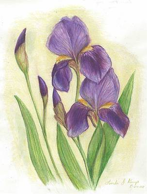 My Purple Irises Poster
