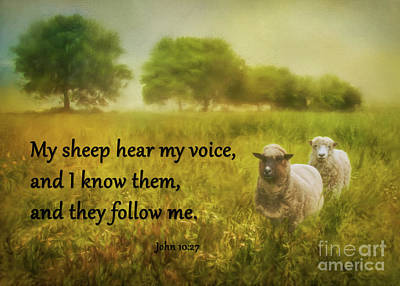 My Sheep Hear My Voice Poster by Priscilla Burgers