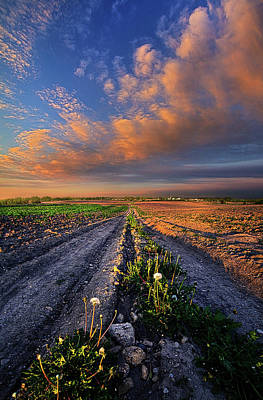 My Way Poster by Phil Koch